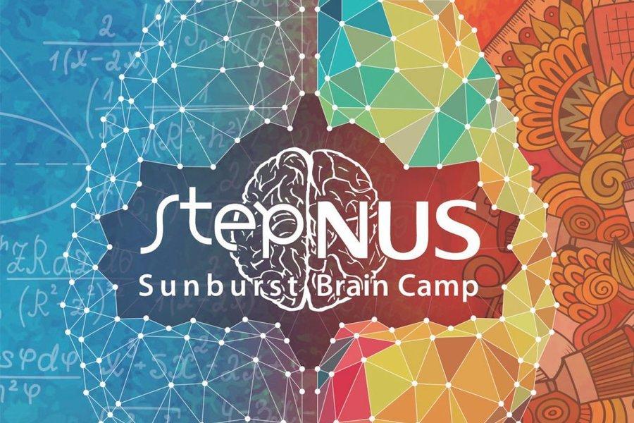 STEP NUS Sunburst Brain Camp 2018 | MIIT